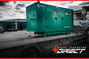 cosmetic power diesel generator