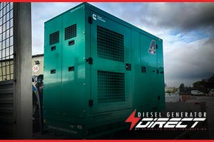 Cuisine Diesel Generator for Backup Electrical Supply
